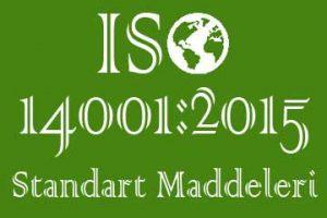 iso 14001 standart maddeleri
