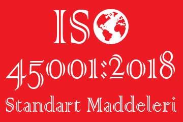 iso 45001 standart maddeleri